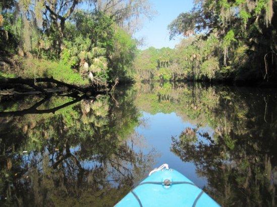 Manatee River Kayak