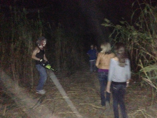 Corn maze chainsaw