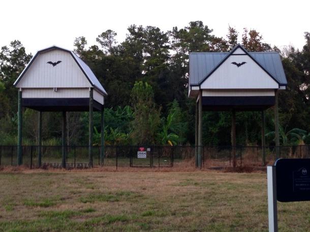 UF bat houses