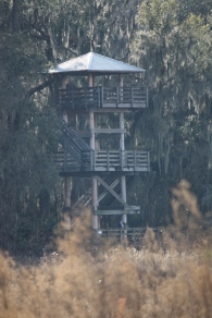 Paynes-Prairie-watch-tower