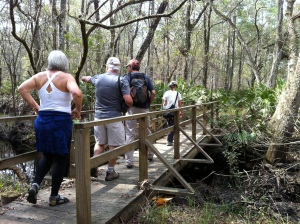 The group hiking over the Bee Creek foot bridge.