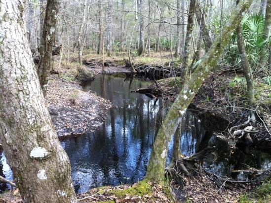 Hatchet Creek